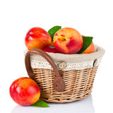 Fresh fruit nectarines in the basket Royalty Free Stock Photos