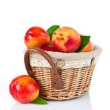 Fresh fruit nectarines in the basket Royalty Free Stock Photos