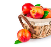 Fresh fruit nectarines in basket Royalty Free Stock Photography