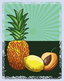 Fresh fruit nutrition healthy background. Fresh fruit nutrition healthy grouped colorful pineapple lemon and peach fitness diet options drawing surface vector illustration
