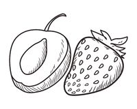 Fresh fruit nutrition healthy black and white hand drawn. Fresh fruit nutrition healthy peach and strawberry food and fitness diet options black and white vector stock illustration