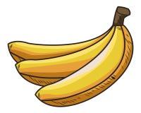 Fresh fruit nutrition healthy hand drawn. Fresh fruit nutrition healthy colorful bananas food and fitness diet options vector illustration graphic design stock illustration