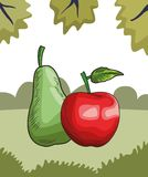Fresh fruit nutrition healthy nature background. Fresh fruit nutrition healthy grouped pear and apple fitness diet options nature leaves background frame vector royalty free illustration