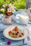 Fresh fruit with oat flakes and milk Stock Images