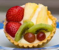 Fresh Fruit Pastry Stock Images