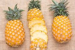 Fresh fruit pineapple healthy food. Fresh fruit pineapple or Ananas comosus is a tropical plant with an edible multiple fruit consisting of coalesced berries Stock Images