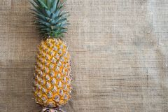Fresh fruit pineapple healthy food. Fresh fruit pineapple or Ananas comosus is a tropical plant with an edible multiple fruit consisting of coalesced berries Royalty Free Stock Photography