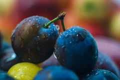 Fresh fruit plums and apples Royalty Free Stock Photos