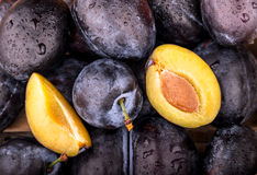 Fresh fruit plums Stock Images