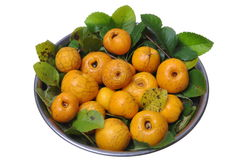 Fresh fruit quince Royalty Free Stock Images
