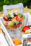 Fresh fruit salad in a glass dish in the garden Royalty Free Stock Photos