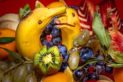 Fresh fruit salad made of banana, kiwi, and grapes pieces, creatively made two dolphins royalty free stock photos