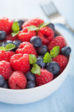 Fresh fruit salad with raspberry blueberry Stock Images