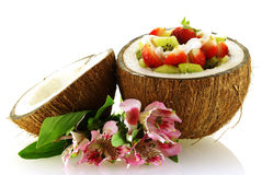 Fresh fruit salad served in half coconut Royalty Free Stock Photo