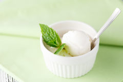 Fresh fruit sorbet ice cream in a white bowl.  Stock Photo