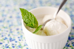Fresh fruit sorbet ice cream in a white bowl close up. stock photography