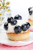 Fresh fruit tart Royalty Free Stock Photo
