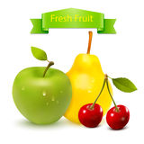 Fresh Fruit Vector Stock Photos