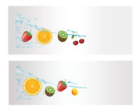 Fresh Fruit in the Splash Water. Fresh Fruit Vector in the Splash Water Stock Images
