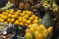 Organic fresh vegetables and fruit. Fresh fruit and vegetables, source of health Royalty Free Stock Photos