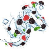 Fresh fruit with water splash and ice cubes Stock Photography
