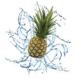 Fresh fruit with water splash Stock Images
