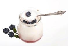 Fresh fruit yogurt with blueberries Stock Photos