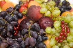 Fresh fruits. Display of various fresh fruits stock photos