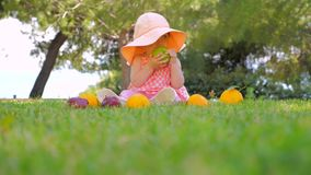 Organic fruits background. Kid eating organic apple in park. Child in panama having fun outdoor on back yard. Happy. Fresh fruits around baby sitting on front stock footage