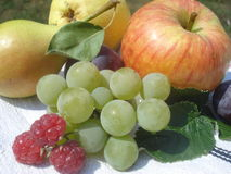 Fresh fruits assortment Royalty Free Stock Photography