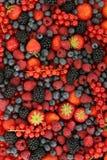 Fresh fruits background Stock Photography