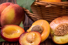 Fresh fruits in a basket Royalty Free Stock Image