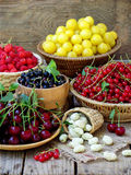 Fresh fruits and berries in the basket on wooden background. Raspberries, cherries, red and black currant, yellow plum, white mulberry stock photos