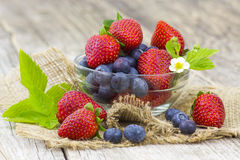 Fresh fruits in a bowl. On wooden background royalty free stock photography