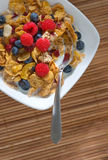Fresh fruits and cereal Royalty Free Stock Photos