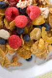 Fresh fruits and cereal Royalty Free Stock Photography