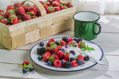 Fresh fruits with cream Royalty Free Stock Photo