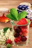 Fresh fruits for dessert or jam Stock Photography