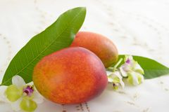 Fresh tropical fruits. Fresh fruits on the dining table stock photography