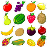 Fresh Fruits Doodle Style Royalty Free Stock Images