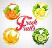 Fresh Fruits Icons Royalty Free Stock Photo