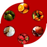 Fresh fruits inside six circles. Six circles with shadow and filled with colorful fruity textures: cut oranges, tangerines, sliced pomegranate, strawberries, cut stock images