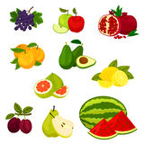 Fresh fruits isolated vector icons set. Royalty Free Stock Photography