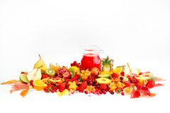 Fresh fruits and juice Stock Photography