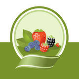 Fresh fruits label. Fresh berries illustration, green vector label series Stock Photo