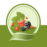 Fresh fruits label. Fresh berries illustration, green vector label series Royalty Free Stock Images