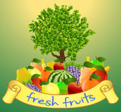 Fresh fruits with labels and trees on green background. Illustration of Fresh fruits with labels and trees on green background Stock Photos