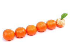 Fresh fruits mandarin. Royalty Free Stock Image