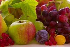Fresh fruits mix . Royalty Free Stock Photos
