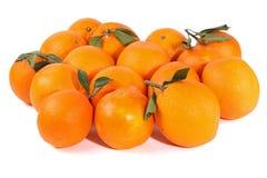 Fresh Fruits: Oranges Royalty Free Stock Photography